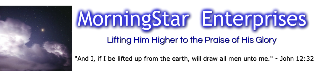 MorniningStar Enterprises